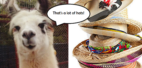 Wearing Lots of Hats? Pick Facebook OR Twitter.